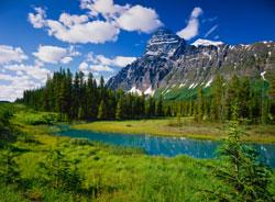 Naturrejse til Banff National Park i Canada